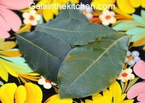 Bay leaves photo