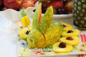 Photo Bunny from Papaya
