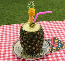Photo Serving Pineapple with Norpro