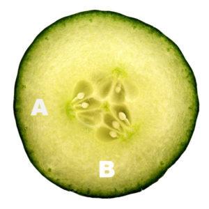 Copy Cucumber garnish waffle shape